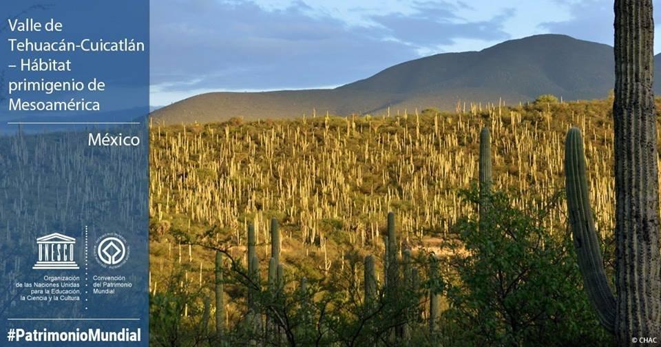 Valle de Tehuacan patrimonio mundial UNESCO
